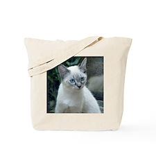 Blue Eyed Kitten Sq.  Tote Bag