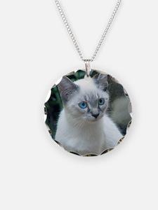 Blue Eyed Kitten Sq.  Necklace