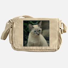 Blue Eyed Kitten Sq.  Messenger Bag