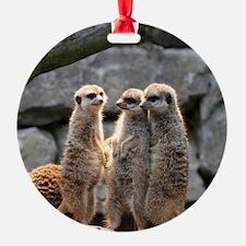 Meerkat026 Ornament