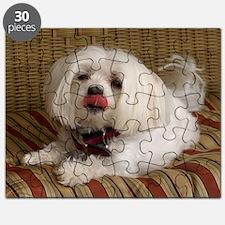 MalteseMousePad2 Puzzle