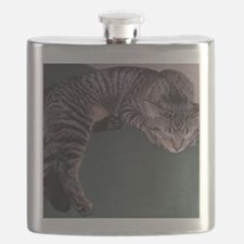 Napping Cat-WR Flask