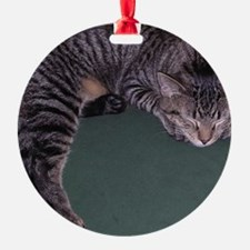 Napping Cat-WR Ornament