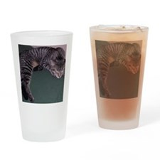 Napping Cat-WR Drinking Glass