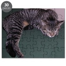 Napping Cat-WR Puzzle