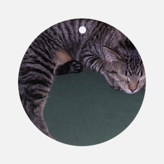 Napping Cat-WR Round Ornament