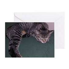 Napping Cat-WR Greeting Card