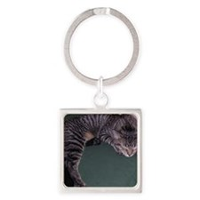Napping Cat-WR Square Keychain