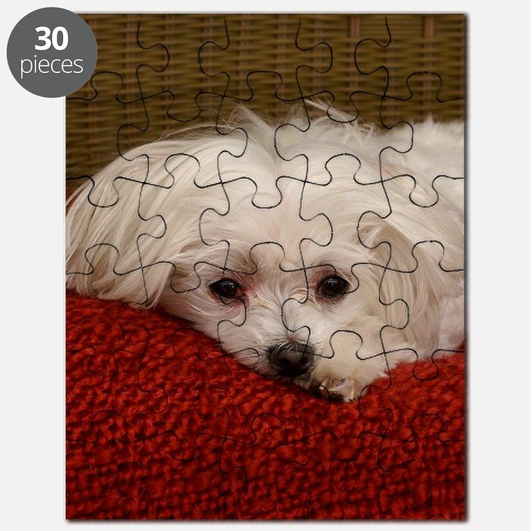 MalteseJournal Puzzle