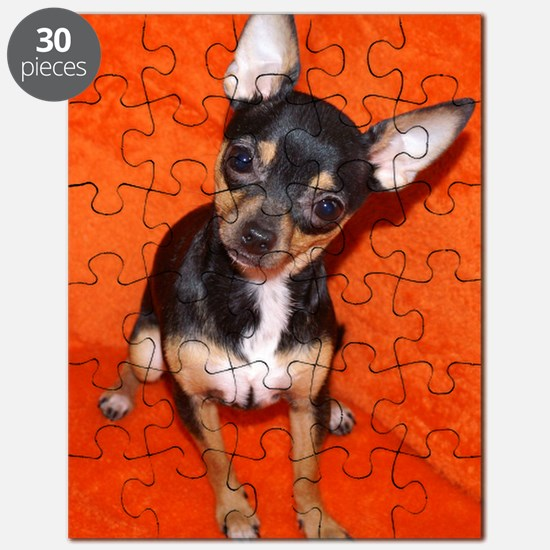 ChihuahuaJournal Puzzle