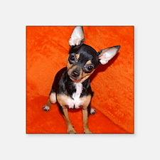 "ChihuahuaMousePad Square Sticker 3"" x 3"""