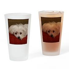 MalteseMousePad3 Drinking Glass