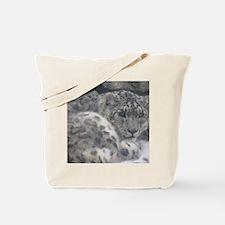 IMG_3114 Tote Bag