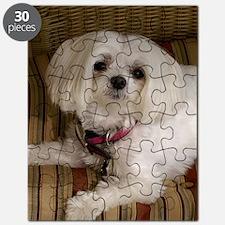 MalteseJournal2 Puzzle
