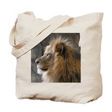 IMG_3586 Tote Bag