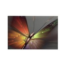 Multicolored Butterfly Rectangle Magnet