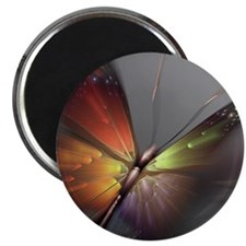 Multicolored Butterfly Magnet