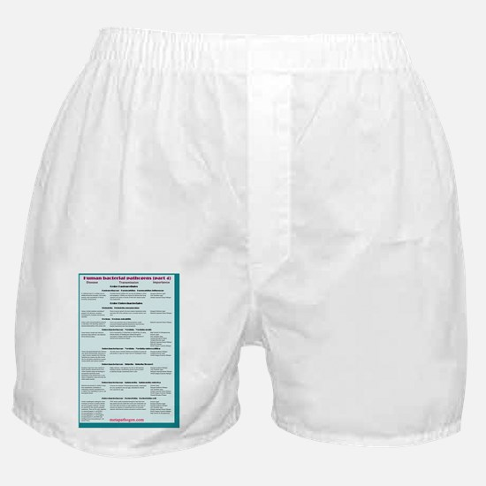 Human bacterial pathogens 4 Boxer Shorts