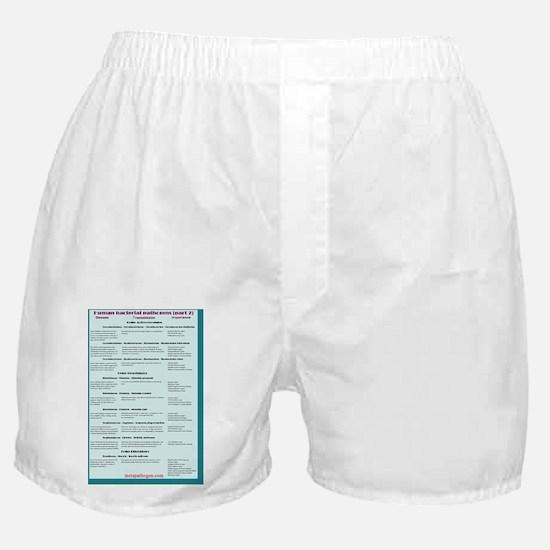 Human bacterial pathogens 2 Boxer Shorts
