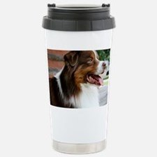 calendarredporch Travel Mug