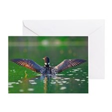 loon Greeting Card