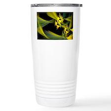 Dream of Chuang Tzu Travel Coffee Mug