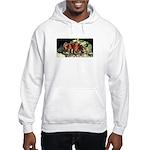 Twinspot Lionfish Hooded Sweatshirt