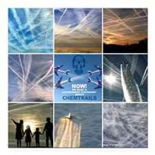 "chemtrails Square Car Magnet 3"" x 3"""