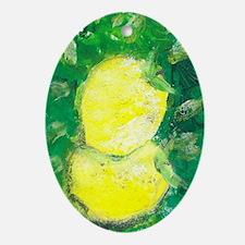 Lemon Oval Ornament