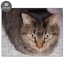 Snuggle-WC2-M Puzzle
