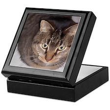 Snuggle-WC-M Keepsake Box