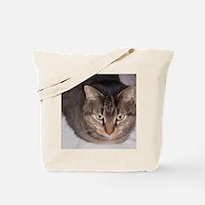 Snuggle-WC-M Tote Bag