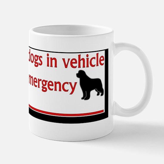NewfsInVehicle Mug