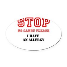 Allergy Warning Oval Car Magnet