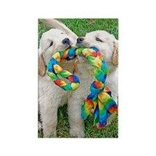 Golden Retriever Puppy Gift iPad  Rectangle Magnet