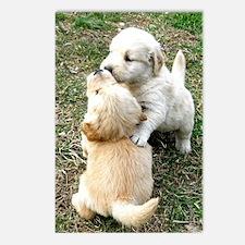 Golden Retriever Puppy Gi Postcards (Package of 8)
