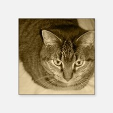 """Snuggle-Sepia-M Square Sticker 3"""" x 3"""""""