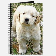 Golden Retriever Puppy iPad Hard Case Journal
