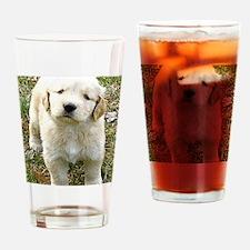 Golden Retriever Puppy iPad Hard Ca Drinking Glass