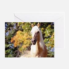 horse-418-6 Greeting Card