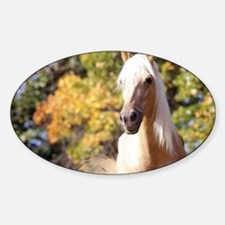 horse-418-6 Decal