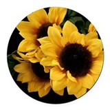 Sunflower Car Magnets