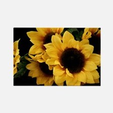 Yellow_Sunflowers Rectangle Magnet