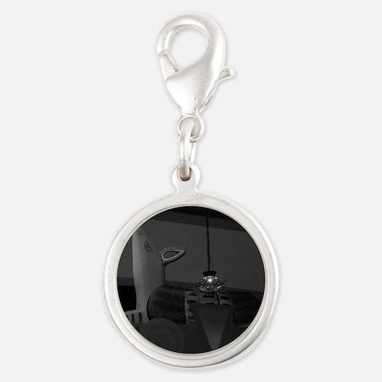 Armadillo Overhead-BW-M Silver Round Charm