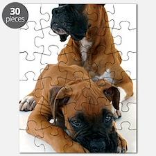 koer 3 Puzzle