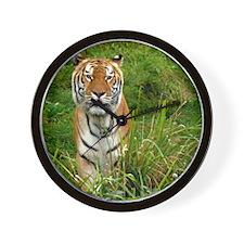 Tiger_11x11_pillow Wall Clock