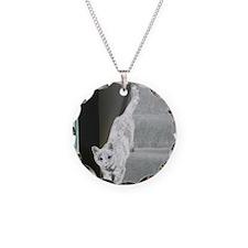 CatDescend-Solar-M Necklace