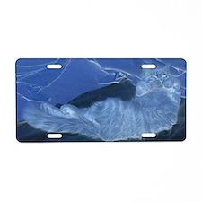 CPaws-Solar-M Aluminum License Plate