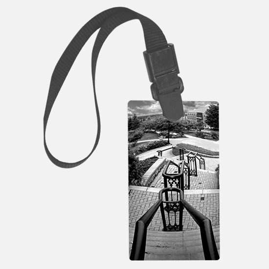 down and away 1 BW Luggage Tag