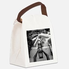down and away 1 BW Canvas Lunch Bag